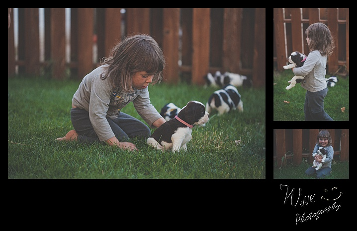 wink-photography-priest river-idaho-puppies-33