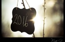 Ringing in the New Year (2016)