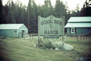 wedding-quailrunranch-newport-wa