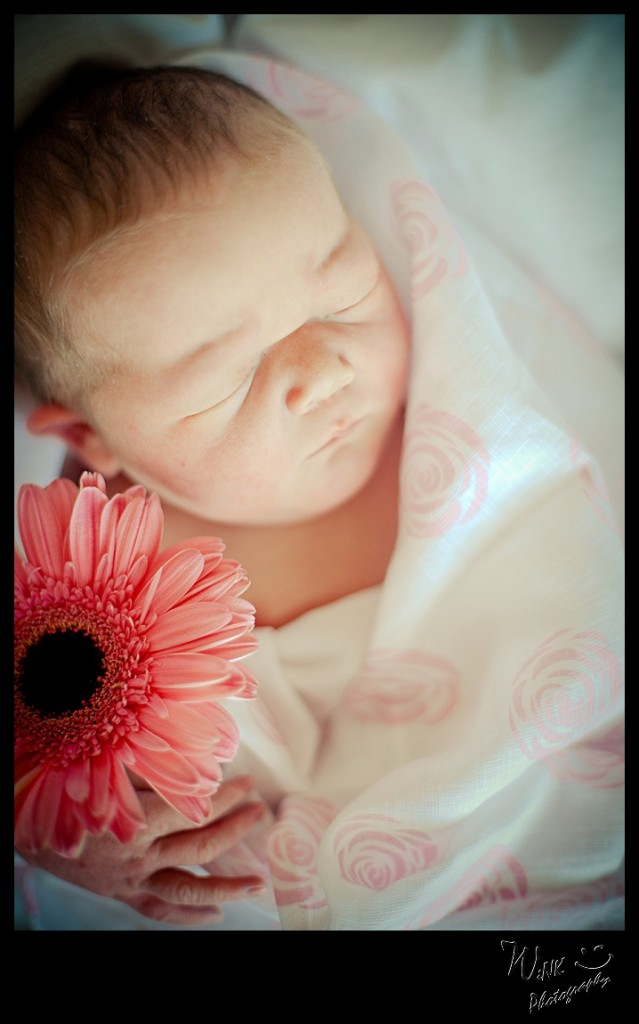 wink-photography-newport-washingtion-birth-newborn-family-2-5